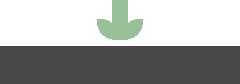 Novo Physiotherapy Logo